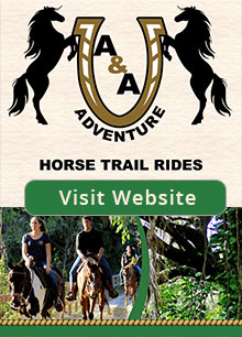 horseback riding south florida