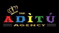 THE ADITU AGENCY