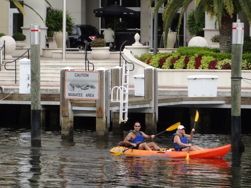 kayaking in Fort Lauderdale