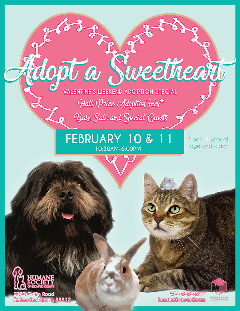 adopt a sweetheart 2018