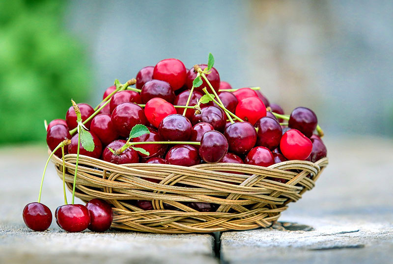 A basket full of red cherries