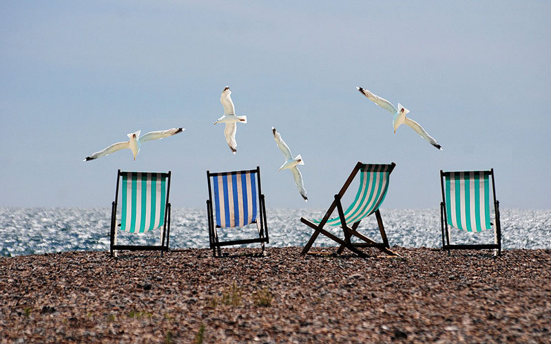 Birds flying at the beach and empty beach chairs