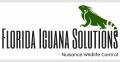 Florida Iguana Solutions